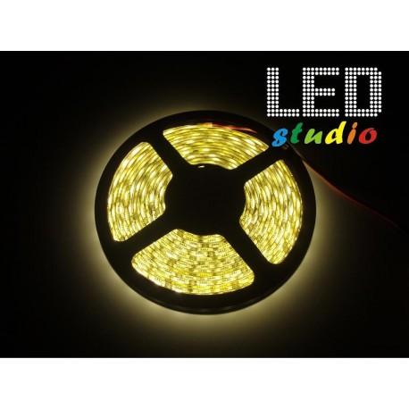 LED pás 4,8W/m, biela, IP00