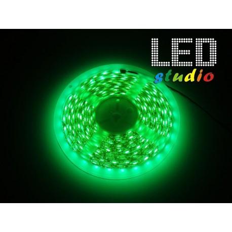 LED pás 4,8W/m, jednofarebný R, G, B, Y, IP65